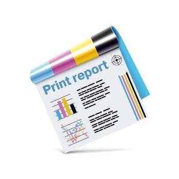 Verifica professionale riviste e cataloghi punto metallico